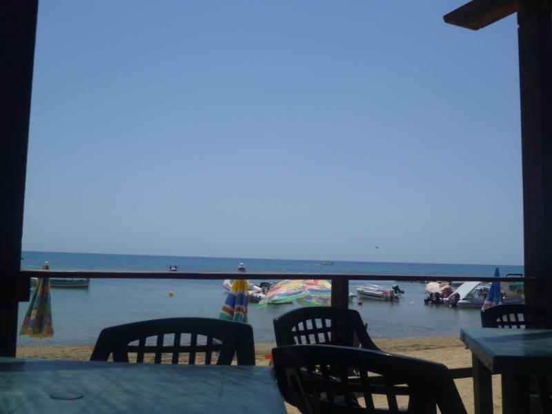 BEACH ARBORS 4