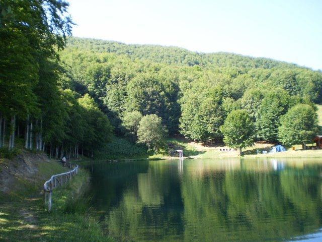 Il laghetto delle Polle a soli 3 km da casa..