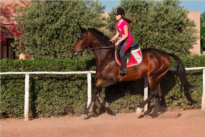 Cavalière - équitation Marrakech