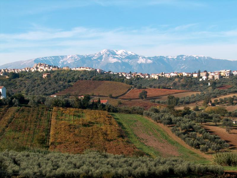 Casa d'Olive - Available for groups up to 8, alquiler vacacional en Fossacesia Marina
