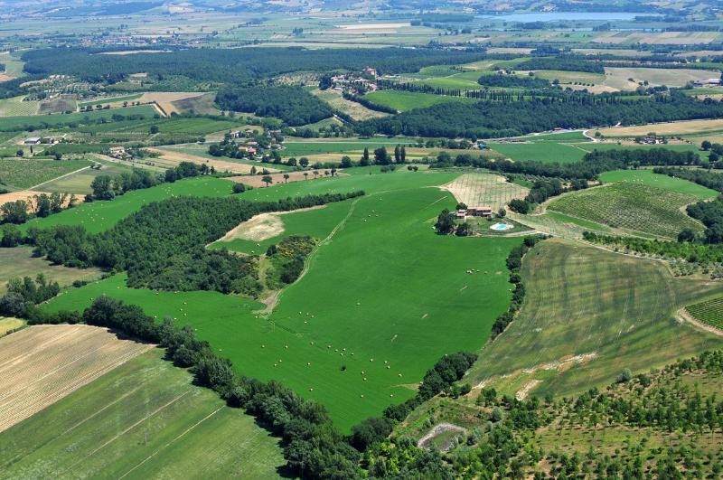 aerial view: farmhouse-pool-farm