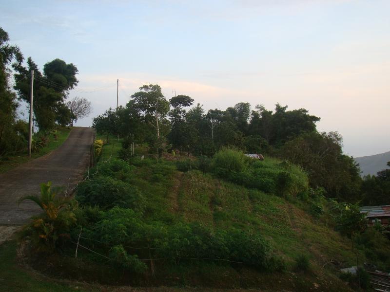 The road to La Vapeur.