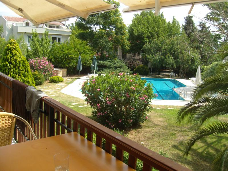 Large Garden and pool