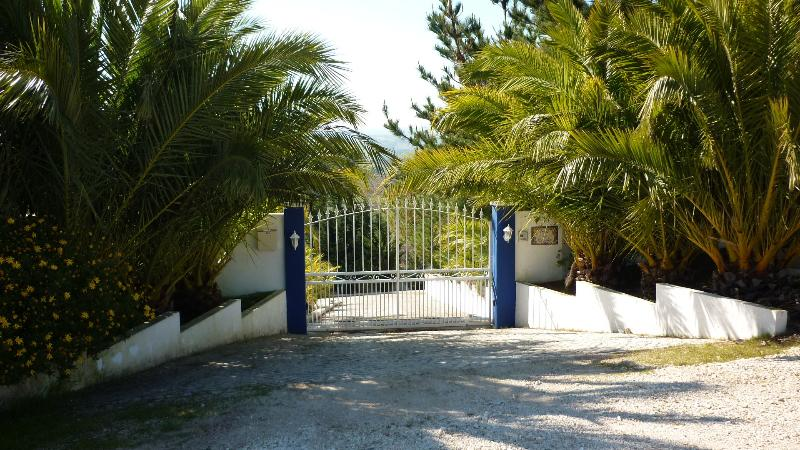 Automatic gates to property