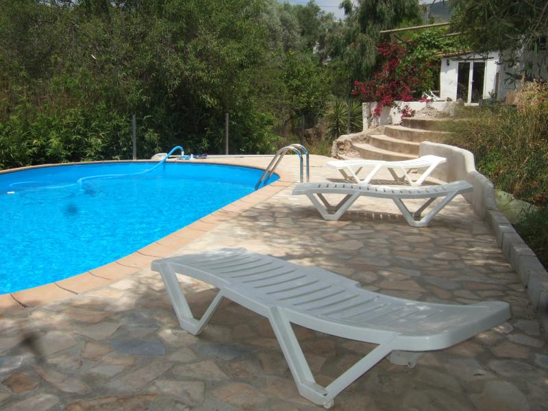 Pool terrace with umbrellas, loungers and sunbeds