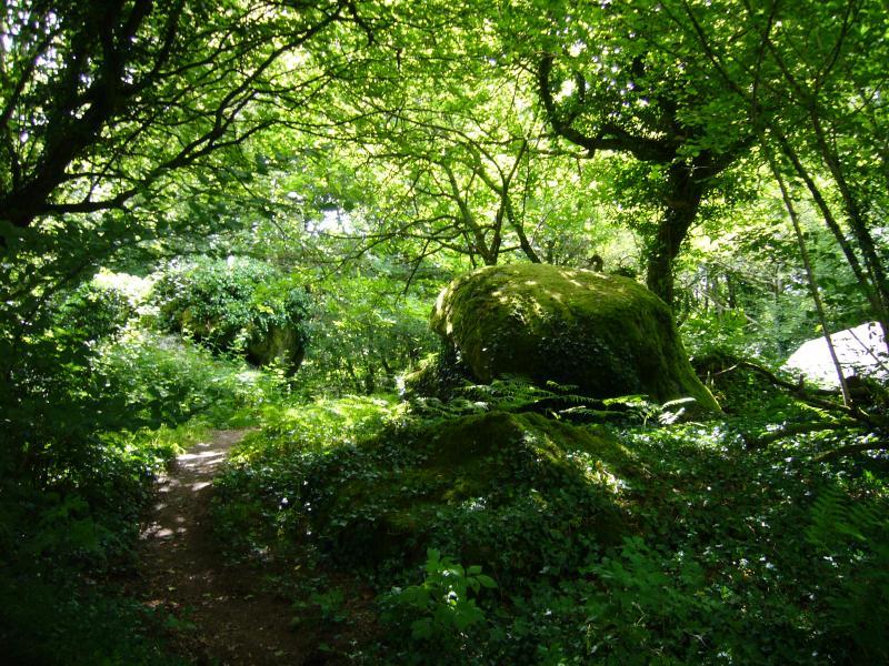 Ancient mossy boulders in Plumstone garden