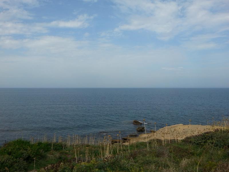 Punta tramontana