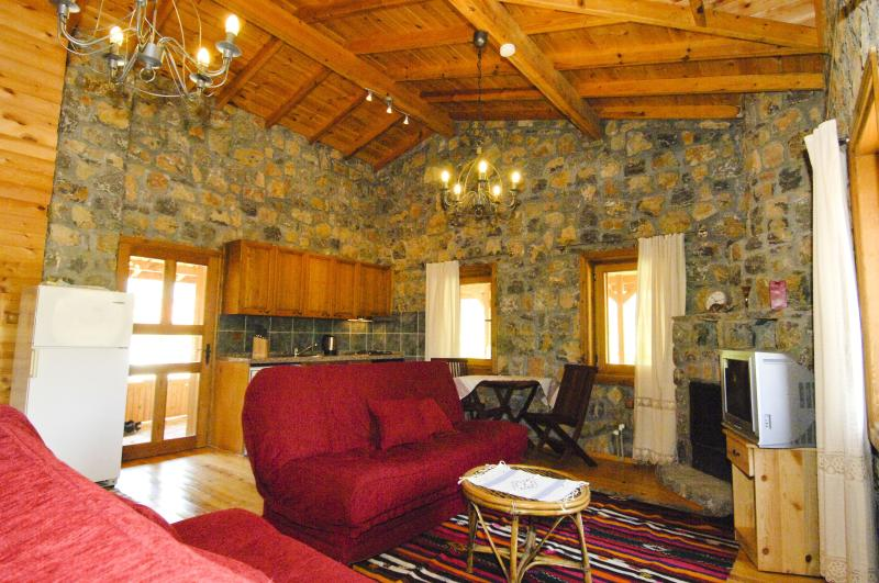 livingroom with kitchenet