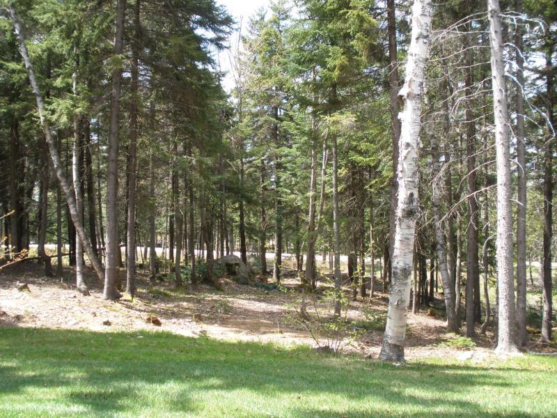 Vista de madera de salón