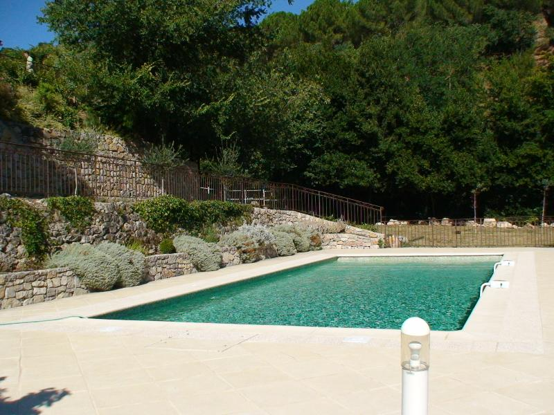 Pool showing garden border with pretty green and grey mediterranean planting