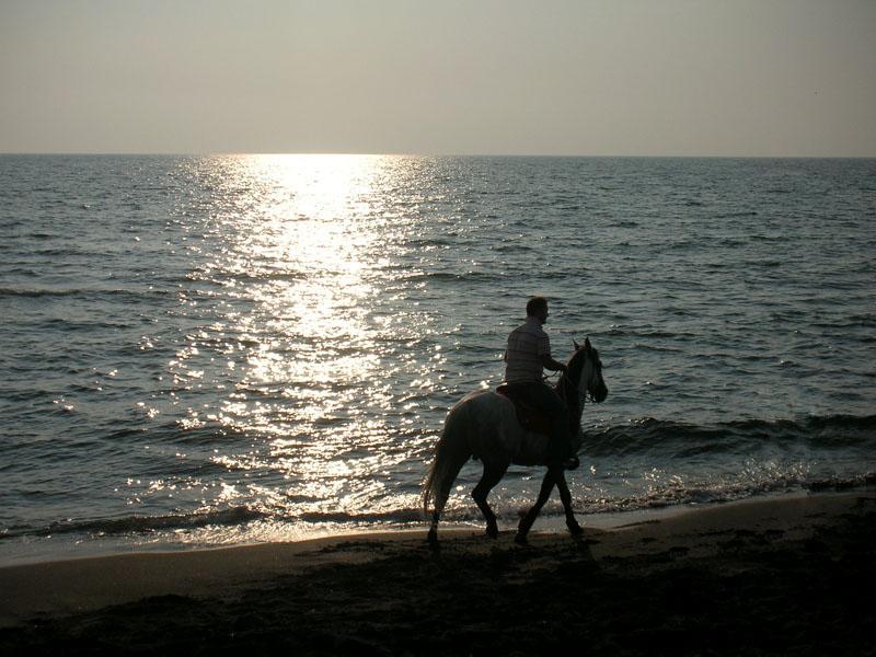 Riding on the beach at Santa Margherita