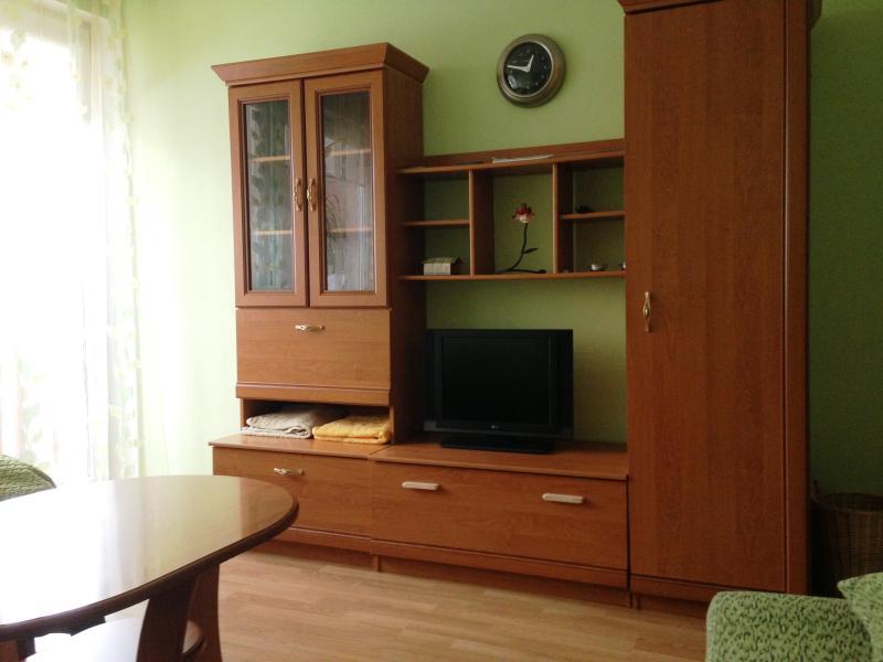 Studio Apartment, holiday rental in Druskininkai