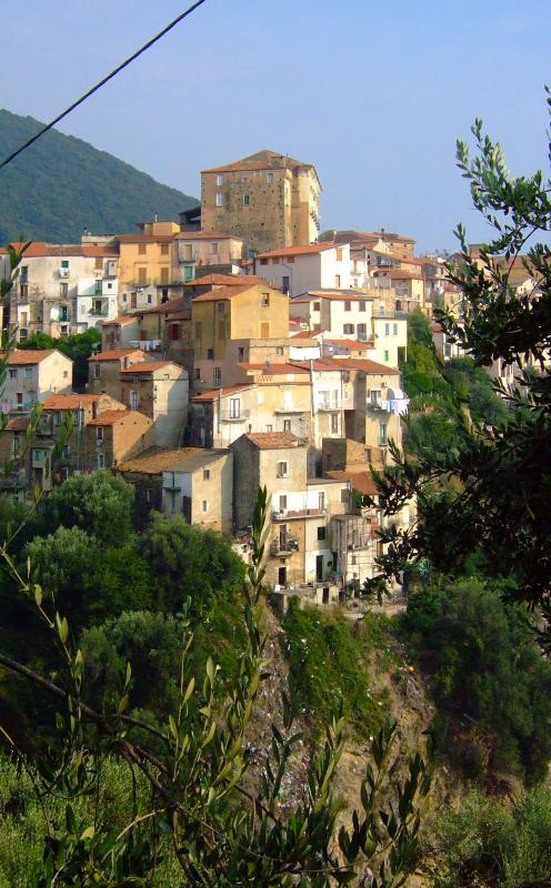 A view of Pisciotta village