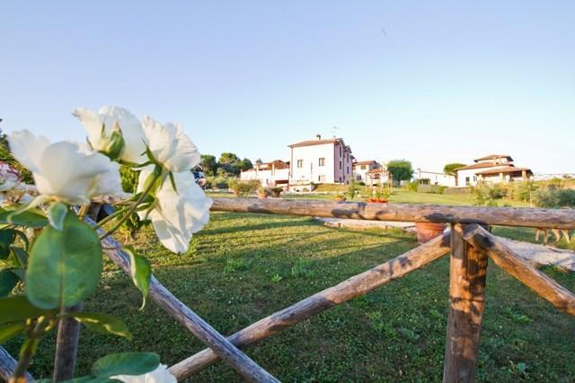 Casale Molinelle, holiday rental in Montecastrilli
