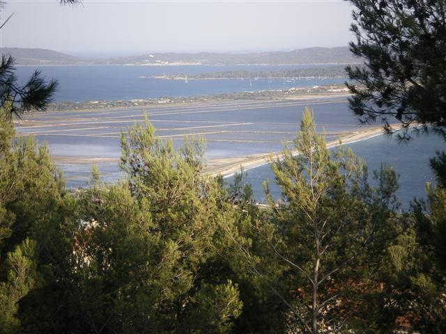 vue des marais salants , zone protégée avec les flamands roses