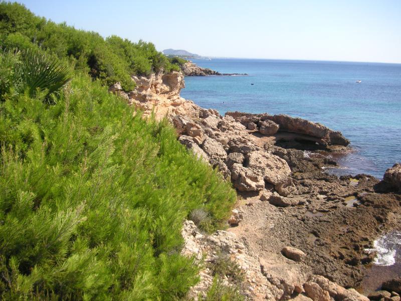 Cove walks