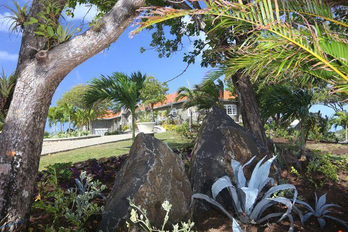 Explore the 3 acre tropical garden ...