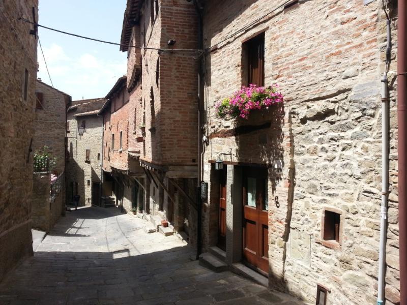 Casina via Iannelli, alquiler vacacional en Castell'Azzara