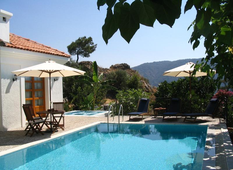 Banana Valley Villa, Pool side, al fresco dining area and Jacuzzi