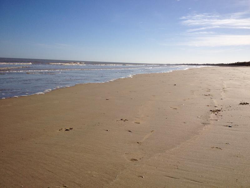 Beach in March!