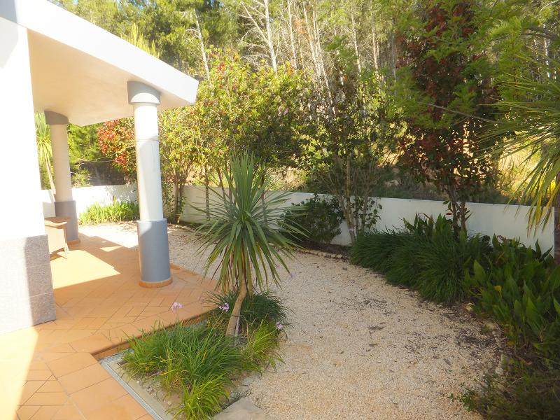 Secluded private rear garden with pine forest behind.