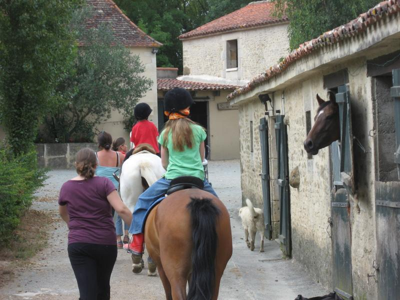 Horse and pony riding lessons and tracking at Menjopolis, 5 minutes away