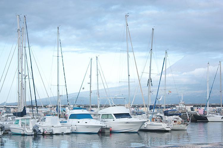 Marina near