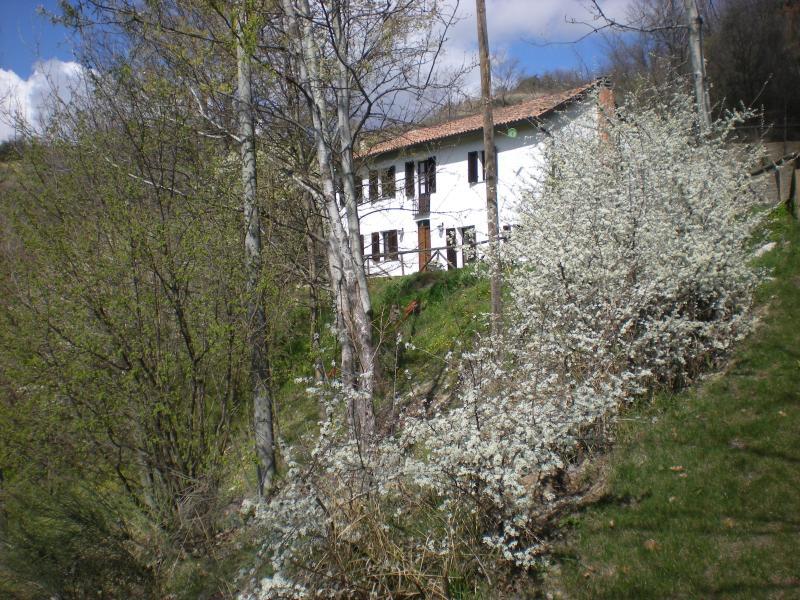 La Rana e la Salamandra, vacation rental in Province of Asti