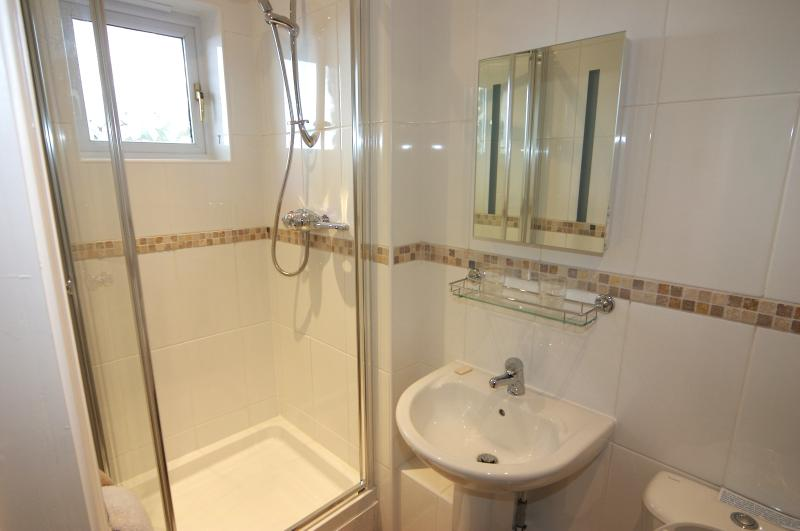 One of the two shower rooms downstairs