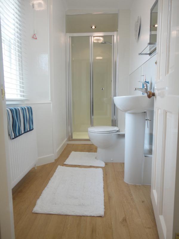 Master Bedroom en-suite Shower & Toilet
