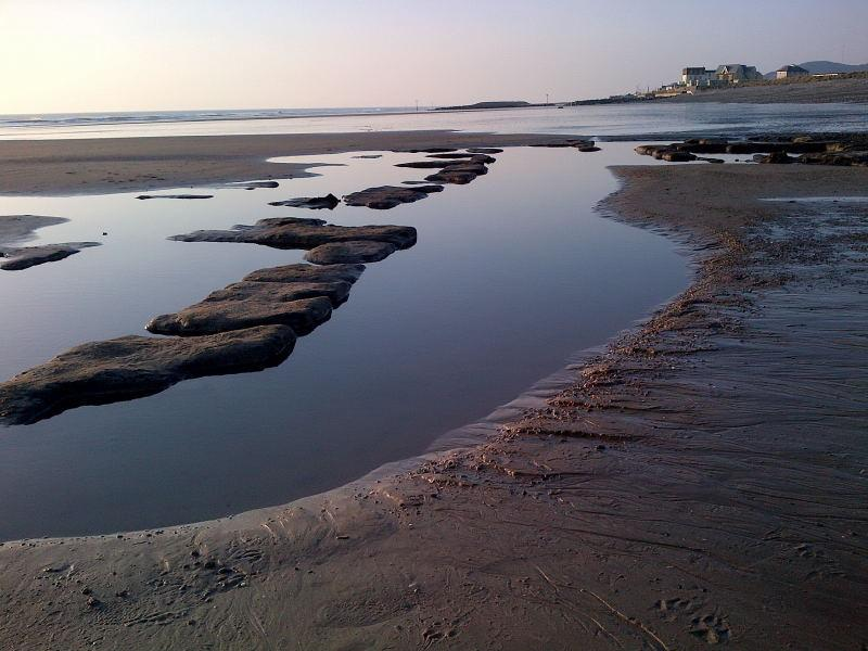 The famous peat 'bog' on Tywyn beach