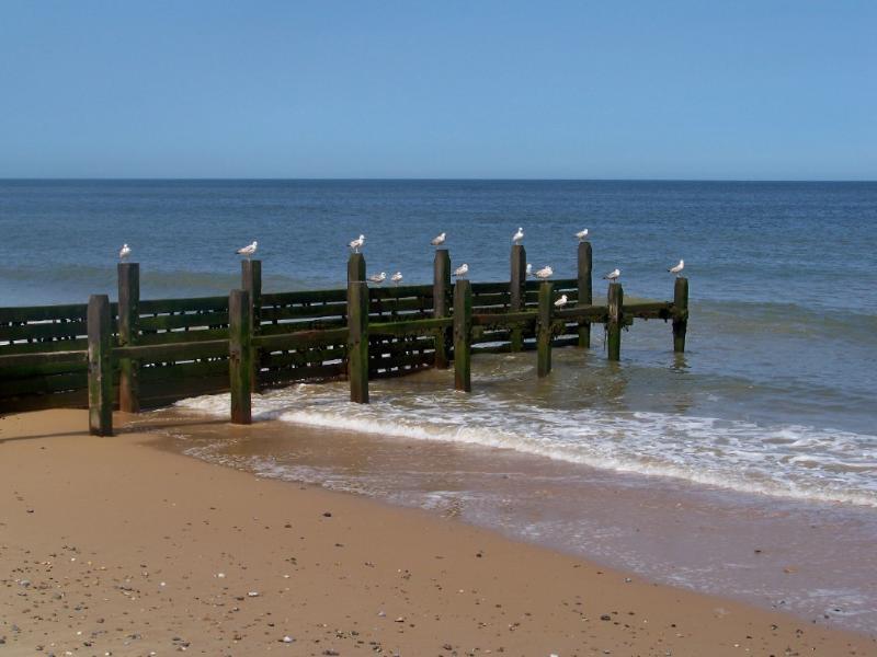 North Norfolk Beach Life