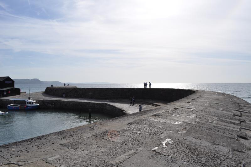 The famous Cobb at Lyme Regis - just 5 minutes drive or catch the local bus.