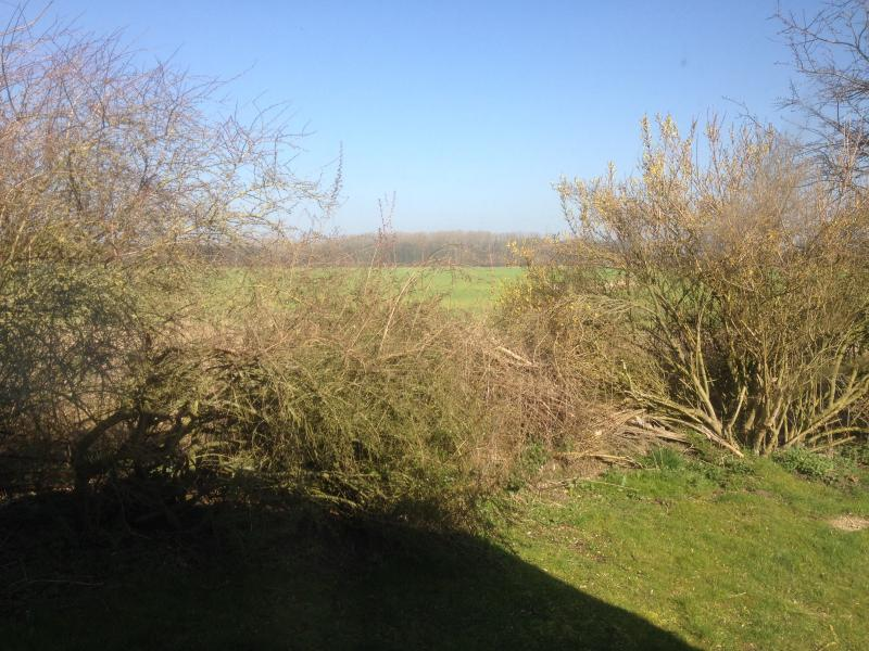 View from the bedroom across the fields