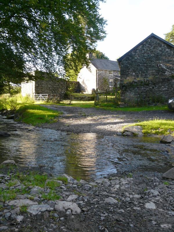 A babbling stream running past
