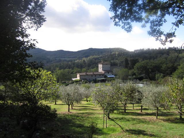 Villa Torre di Colonna paesaggio #fiesolelanscaperentals