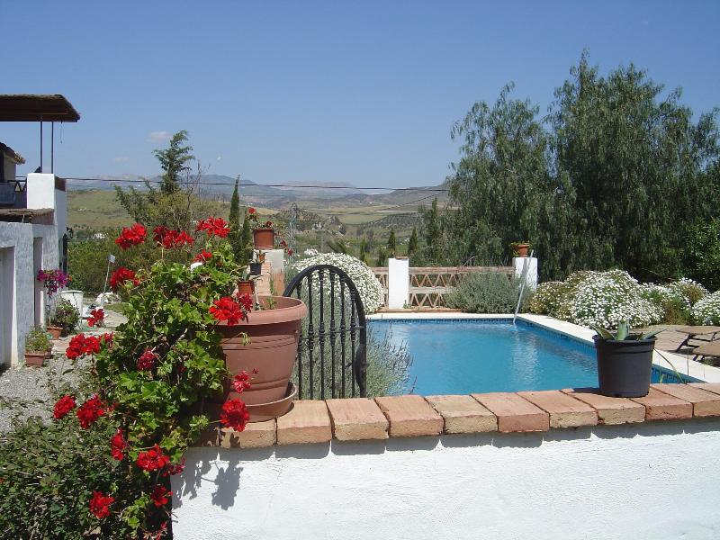 Casa Los Olivos and pool