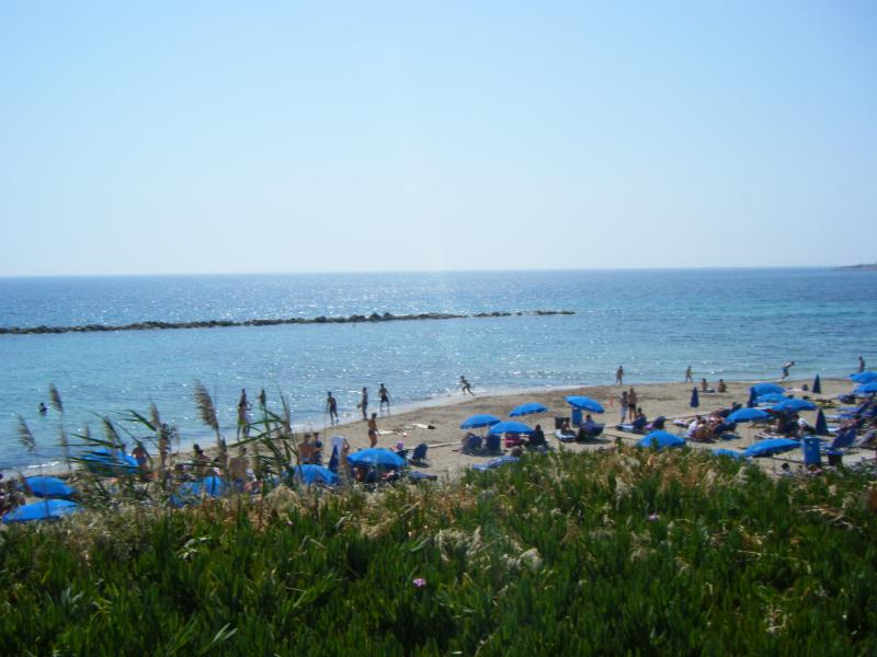 Beautiful Paphos - so much to do...so little time