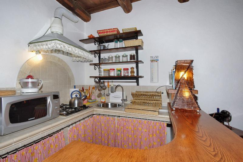 American kitchen/kitchen