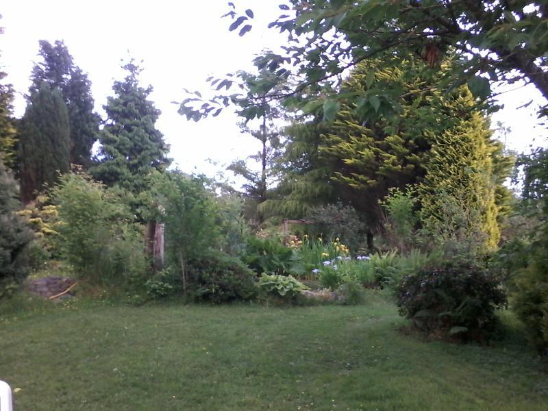Explore the garden