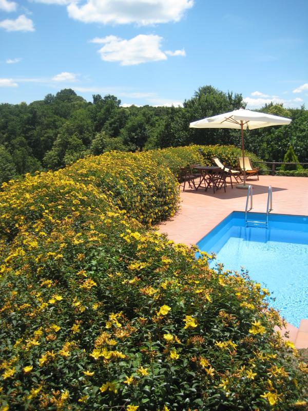 Cobertura flor alrededor de la piscina panorámica