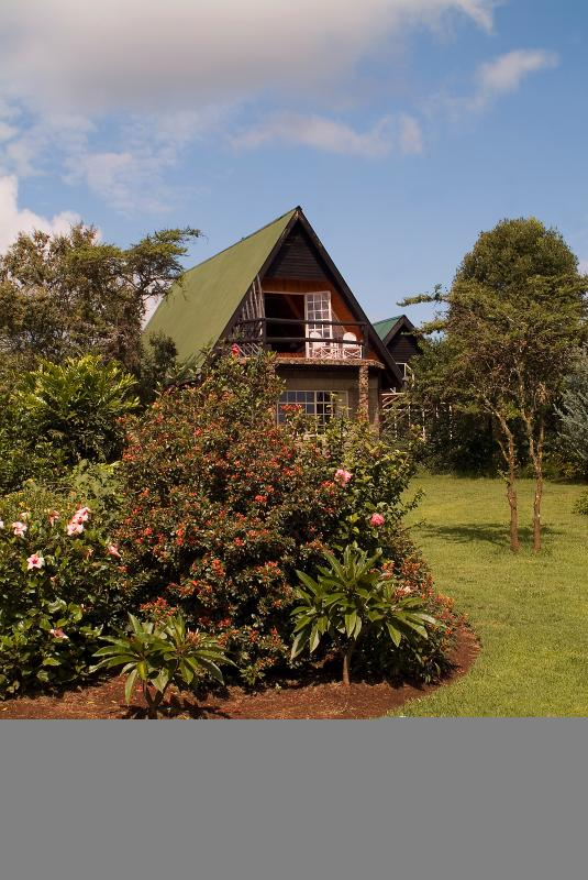 Larger cottage from garden
