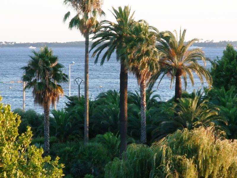 Vista panorámica del mar & jardines de balcón
