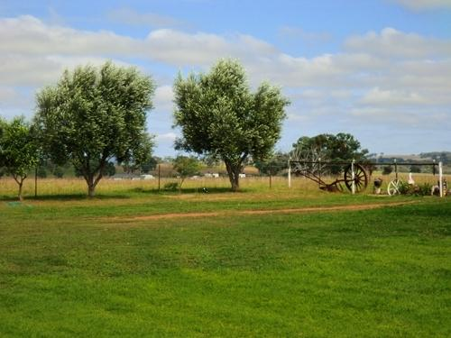 Fully fenced property - Pet safe environment