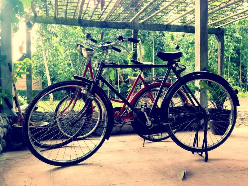 Free Bycycle to enjoy Borobudur