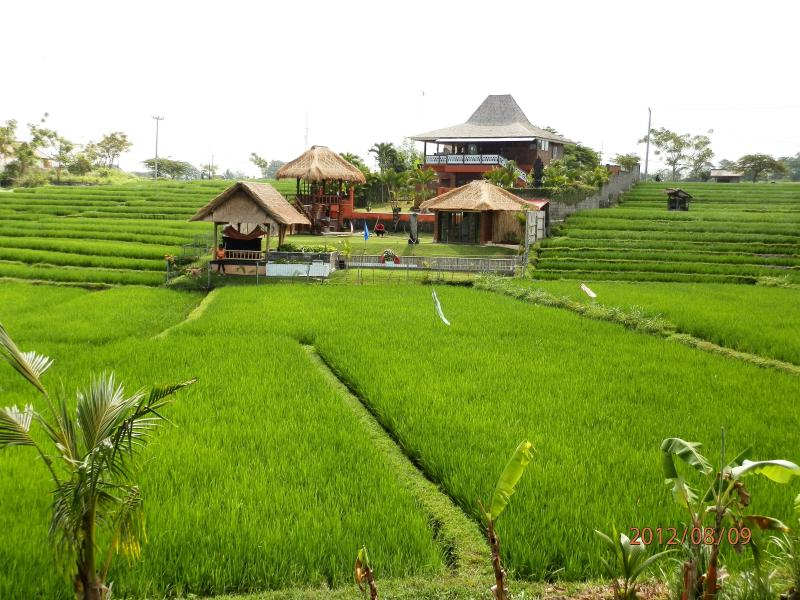 3 BR VILLA on BALI ricefields, holiday rental in Tanah Lot