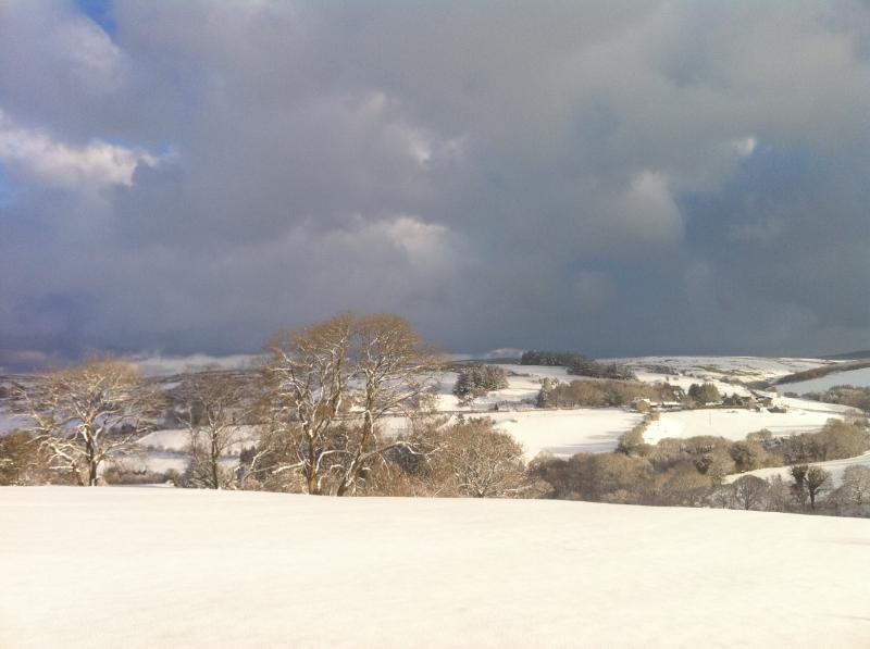 Stunning in Winter