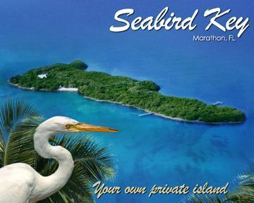 Seabird Key, Your Own Private Island!  The entire island all yours with 10 acres of beauty + boat.