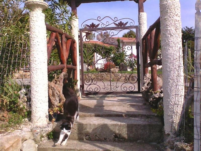 B & B    Monte Arana, vacation rental in Thiesi