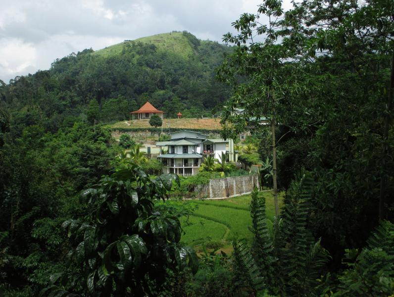 The Paddyfield Hideaway and Octagon Retreat, holiday rental in Gampola